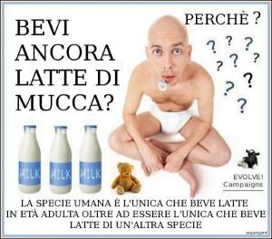 spot_latte_mucca._c